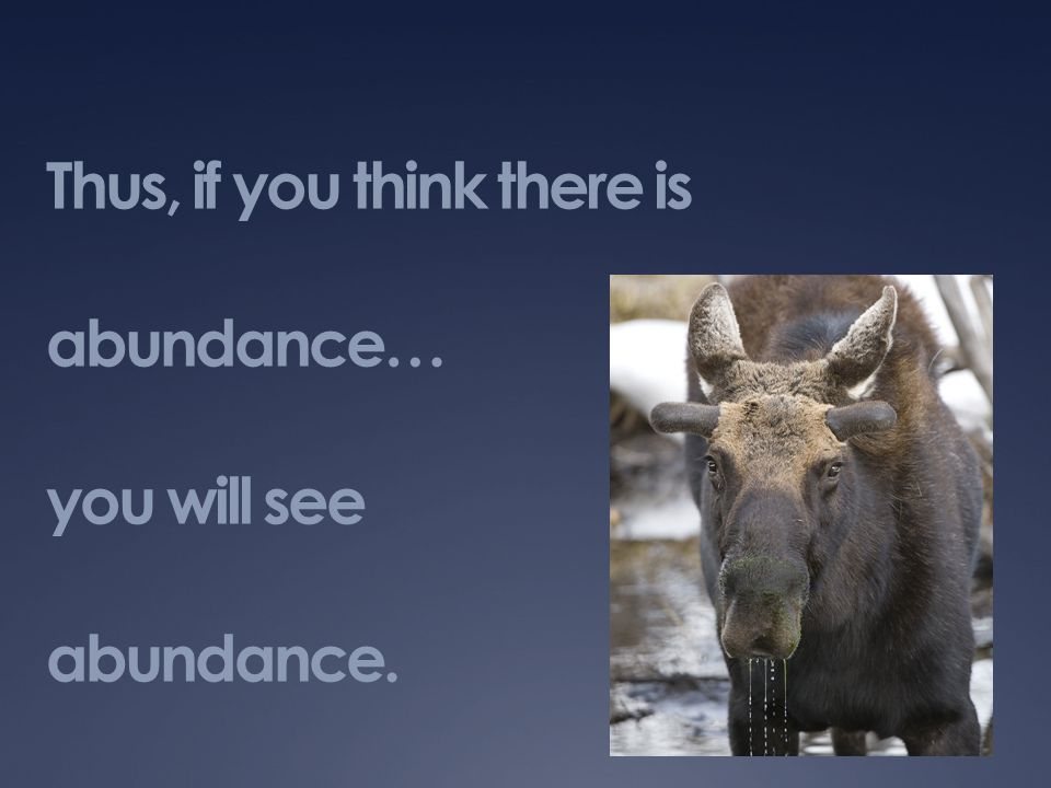 Thus, if you think there is abundance… you will see abundance.