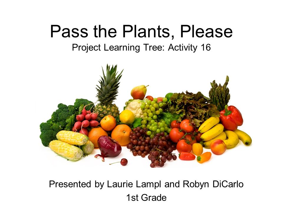 Pass the Plants, Please Project Learning Tree: Activity 16 Presented by Laurie Lampl and Robyn DiCarlo 1st Grade