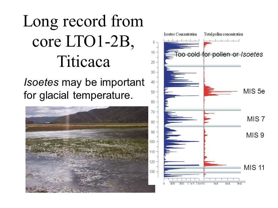 Long record from core LTO1-2B, Titicaca MIS 5e MIS 7 MIS 9 MIS 11 Isoetes may be important for glacial temperature.