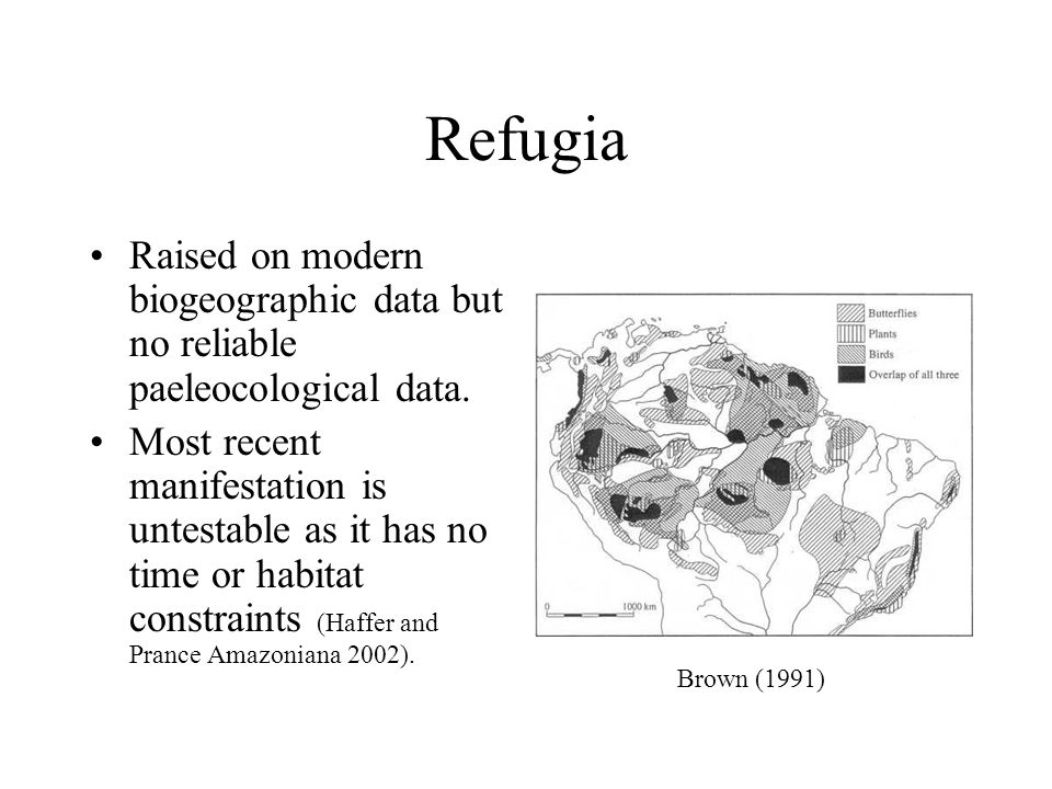 Dry Forest Arcs Modern biogeographic data used to suggest the presence of a past habitat bridge of dry forests.
