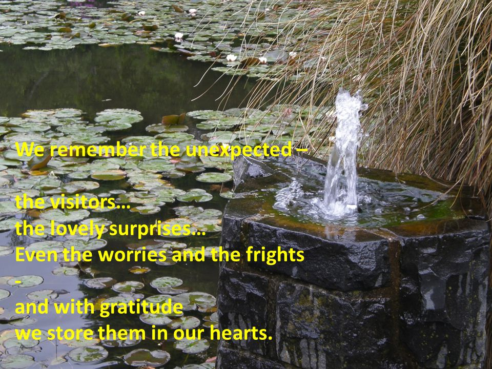 We remember the unexpected – the visitors… the lovely surprises… Even the worries and the frights - and with gratitude we store them in our hearts.