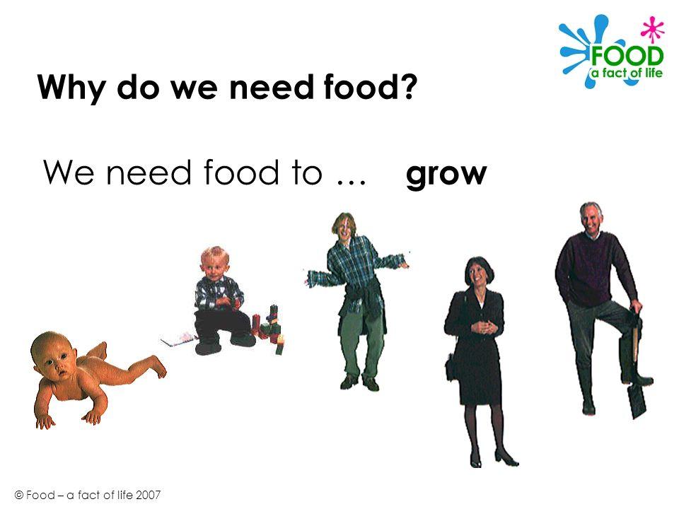 © Food – a fact of life 2007 Why do we need food? grow We need food to …
