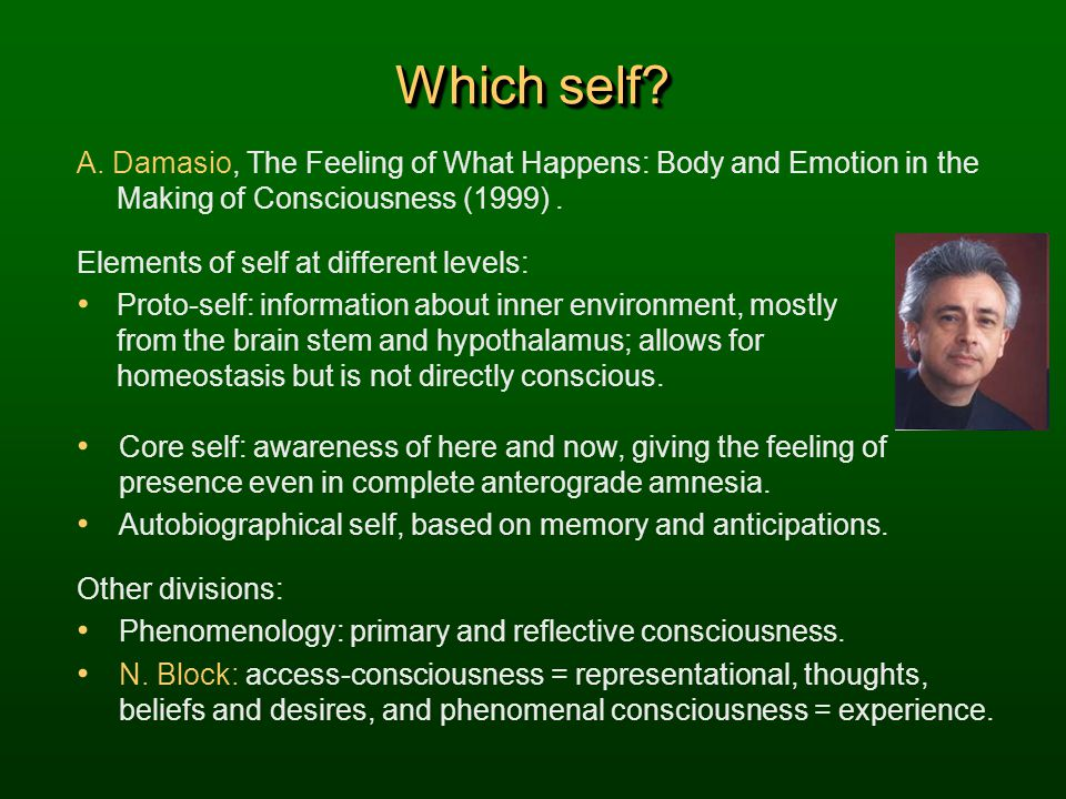 Which self? A. Damasio, The Feeling of What Happens: Body and Emotion in the Making of Consciousness (1999). Elements of self at different levels: Pro