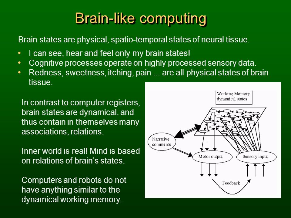 Brain-like computing Brain states are physical, spatio-temporal states of neural tissue. I can see, hear and feel only my brain states! Cognitive proc