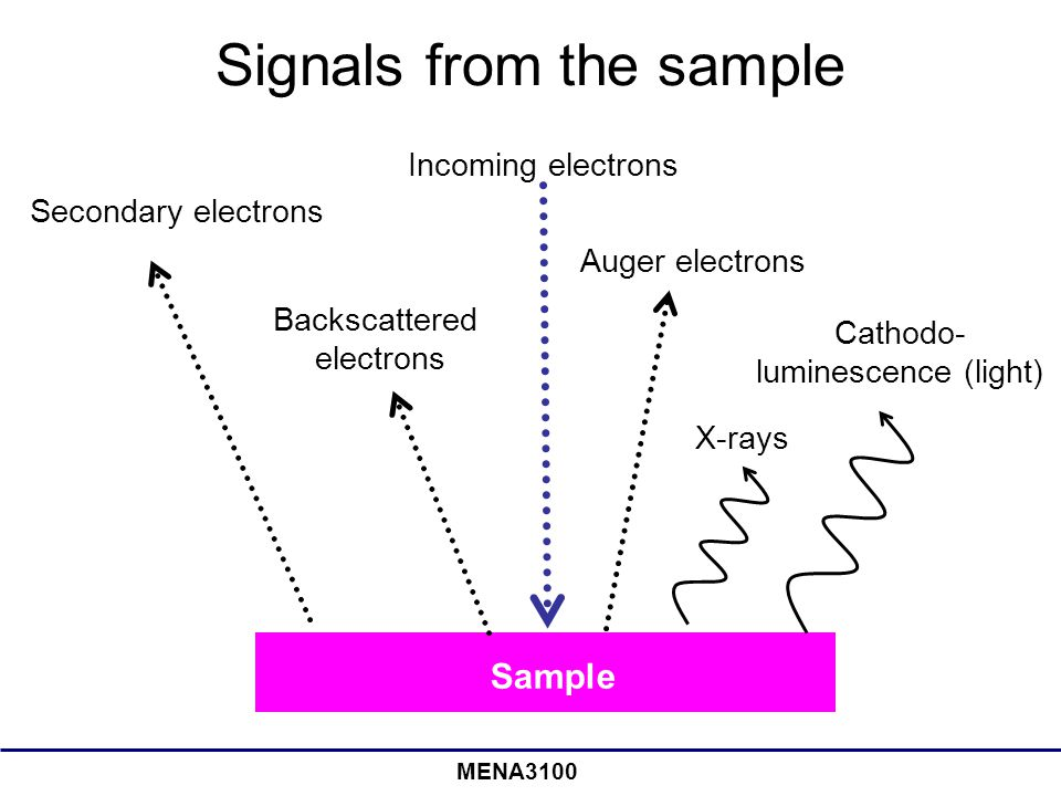MENA3100 Signals from the sample Incoming electrons Secondary electrons Backscattered electrons Auger electrons X-rays Cathodo- luminescence (light) S