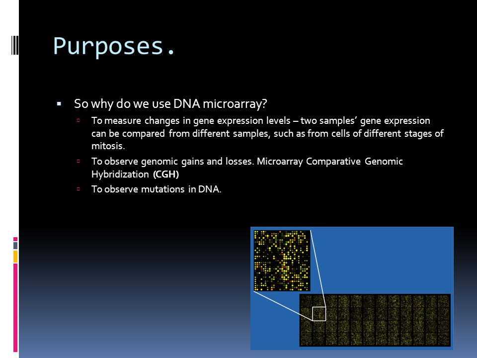 Purposes. So why do we use DNA microarray.