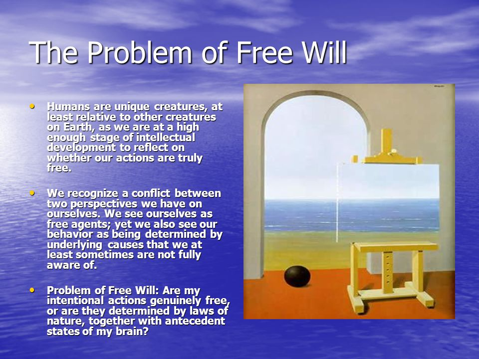 The Problem of Free Will Humans are unique creatures, at least relative to other creatures on Earth, as we are at a high enough stage of intellectual development to reflect on whether our actions are truly free.
