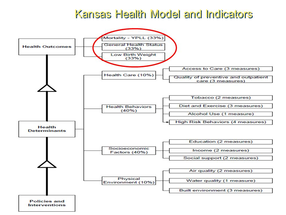 Kansas Health Model and Indicators