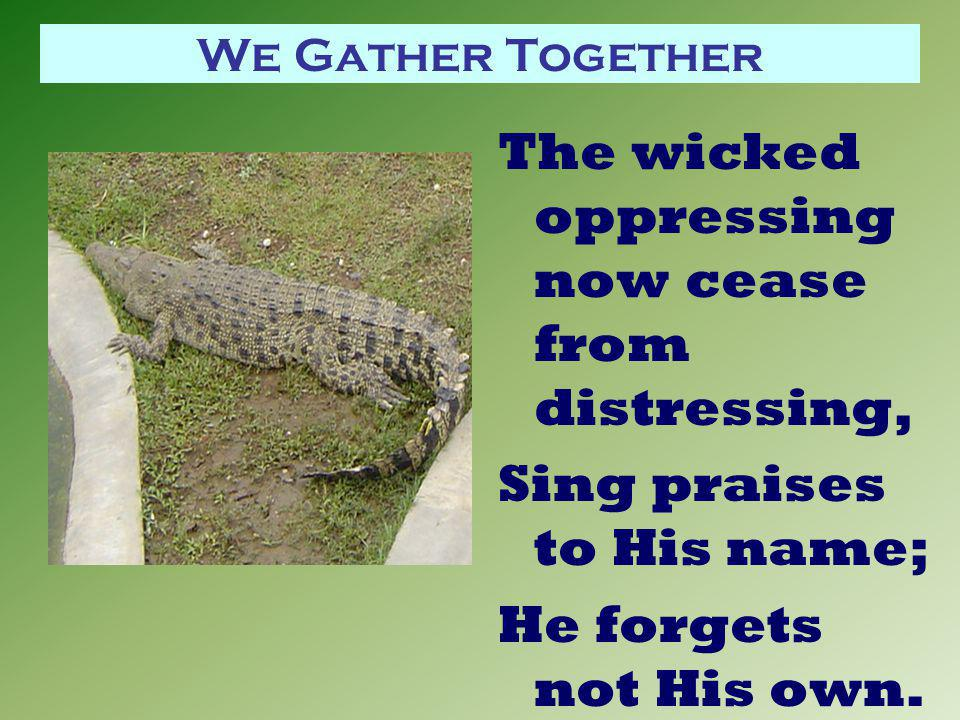 We Gather Together The wicked oppressing now cease from distressing, Sing praises to His name; He forgets not His own.