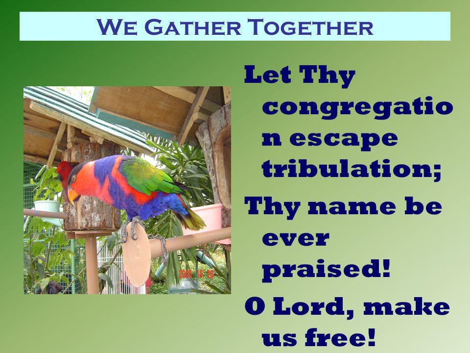 We Gather Together Let Thy congregatio n escape tribulation; Thy name be ever praised! O Lord, make us free!