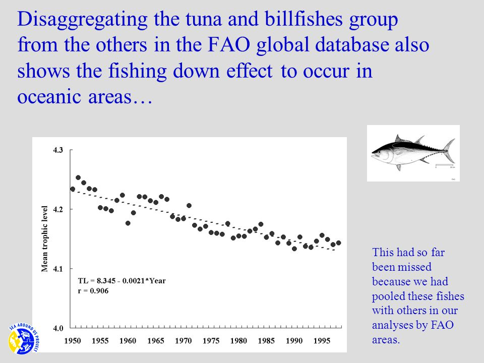 Disaggregating the tuna and billfishes group from the others in the FAO global database also shows the fishing down effect to occur in oceanic areas… This had so far been missed because we had pooled these fishes with others in our analyses by FAO areas.