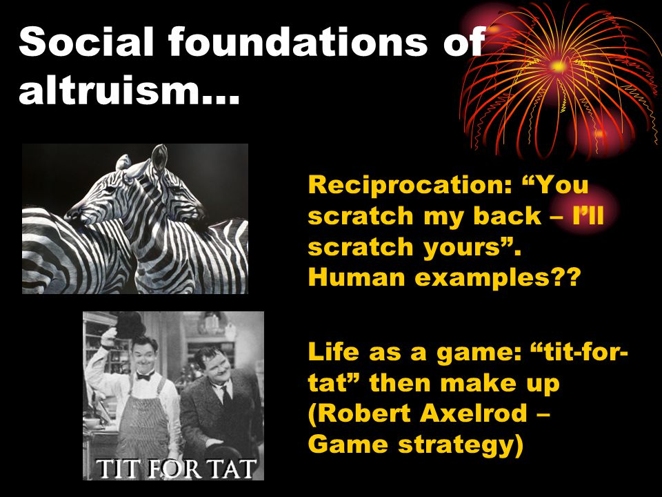 Social foundations of altruism… Reciprocation: You scratch my back – I'll scratch yours .