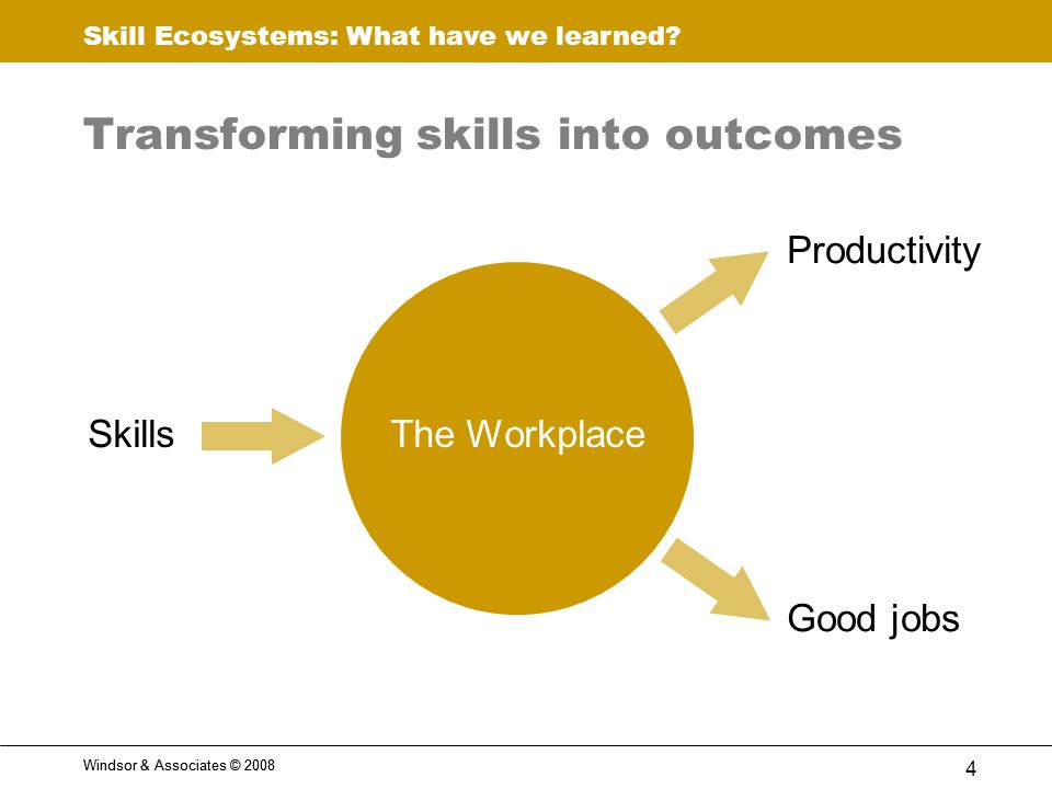 Skill Ecosystems: What have we learned.