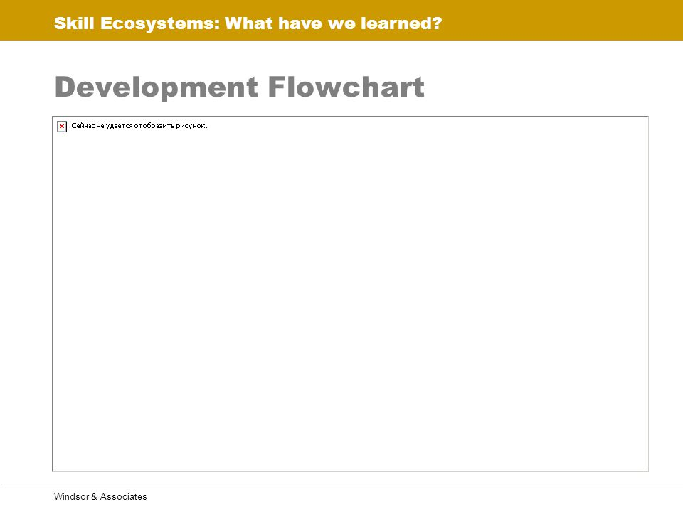 Skill Ecosystems: What have we learned Windsor & Associates Development Flowchart