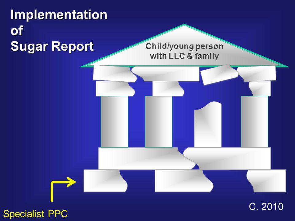 Child/young person with LLC & family Child/young person with LLC & family C. 2010 Implementationof Sugar Report Specialist PPC