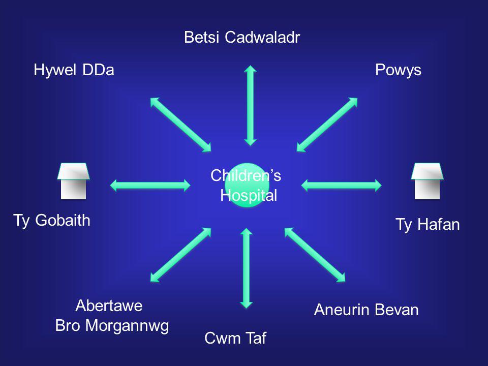 Hywel DDa Betsi Cadwaladr Powys Aneurin Bevan Cwm Taf Abertawe Bro Morgannwg Ty Gobaith Ty Hafan Children's Hospital