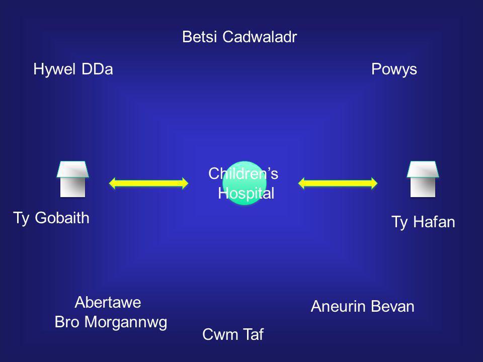 Ty Gobaith Ty Hafan Children's Hospital Hywel DDa Betsi Cadwaladr Powys Aneurin Bevan Abertawe Bro Morgannwg Cwm Taf