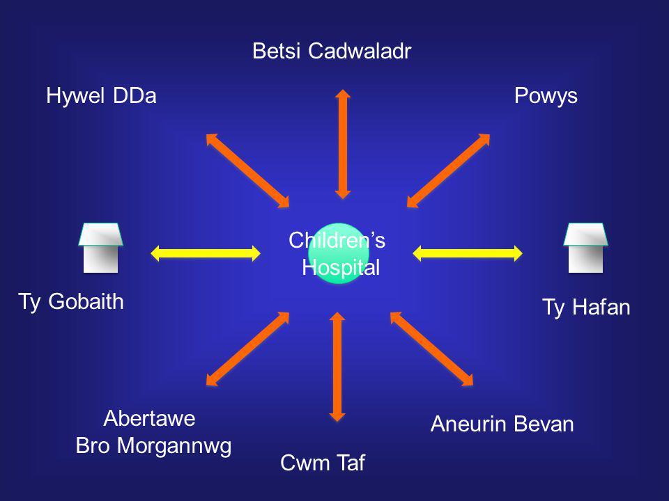 Hywel DDa Betsi Cadwaladr Powys Aneurin Bevan Abertawe Bro Morgannwg Ty Gobaith Ty Hafan Children's Hospital Cwm Taf