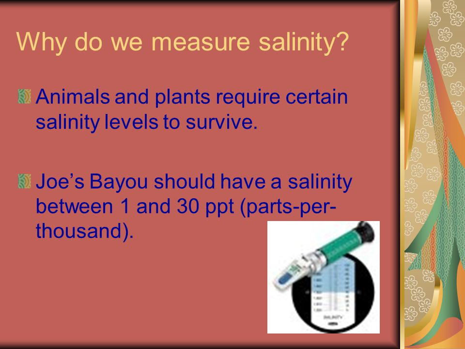 Why do we measure salinity. Animals and plants require certain salinity levels to survive.