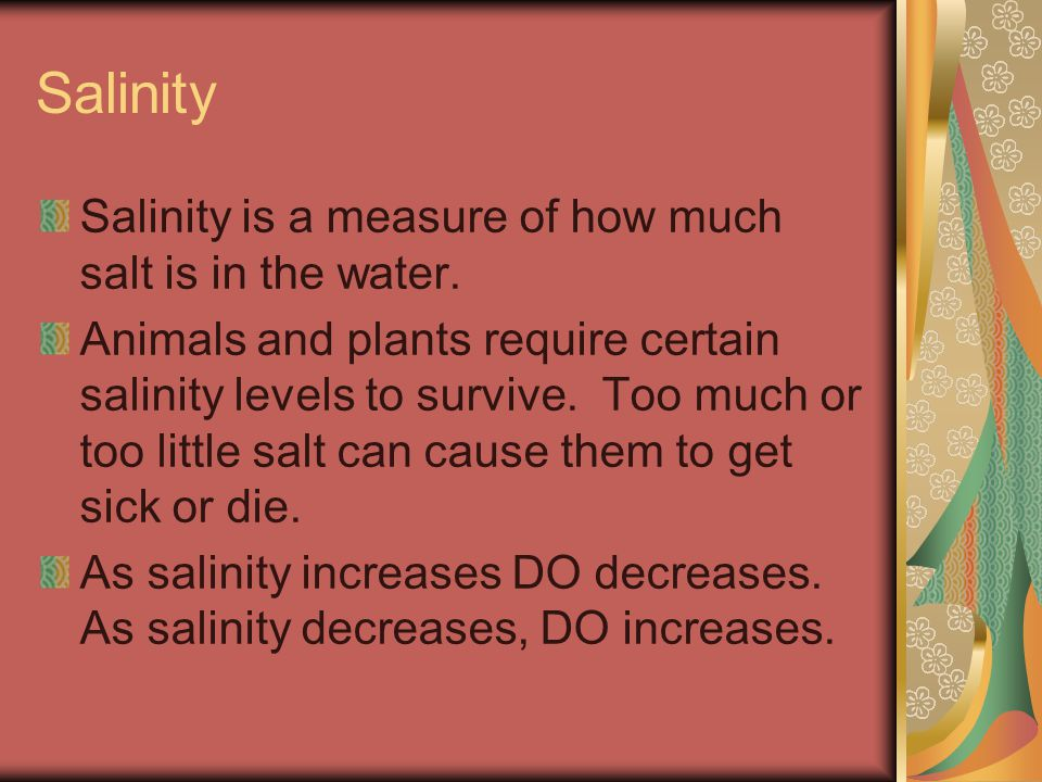 Salinity Salinity is a measure of how much salt is in the water.