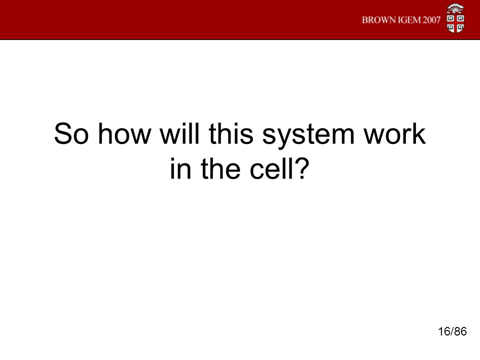 So how will this system work in the cell? 16/86