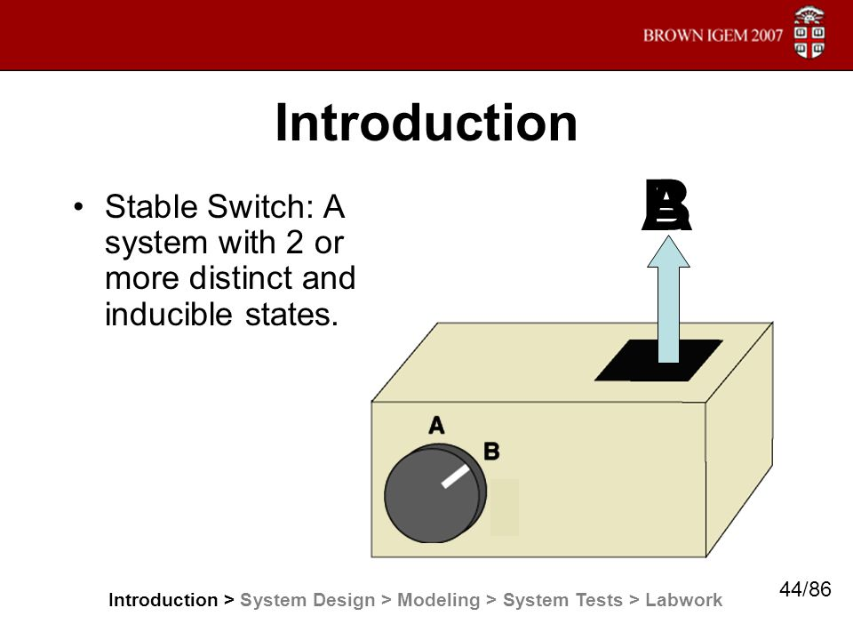 Introduction Stable Switch: A system with 2 or more distinct and inducible states. AB Introduction > System Design > Modeling > System Tests > Labwork