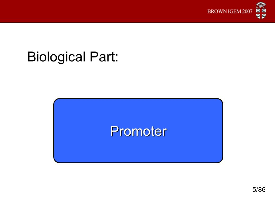 Biological Part: Promoter 5/86
