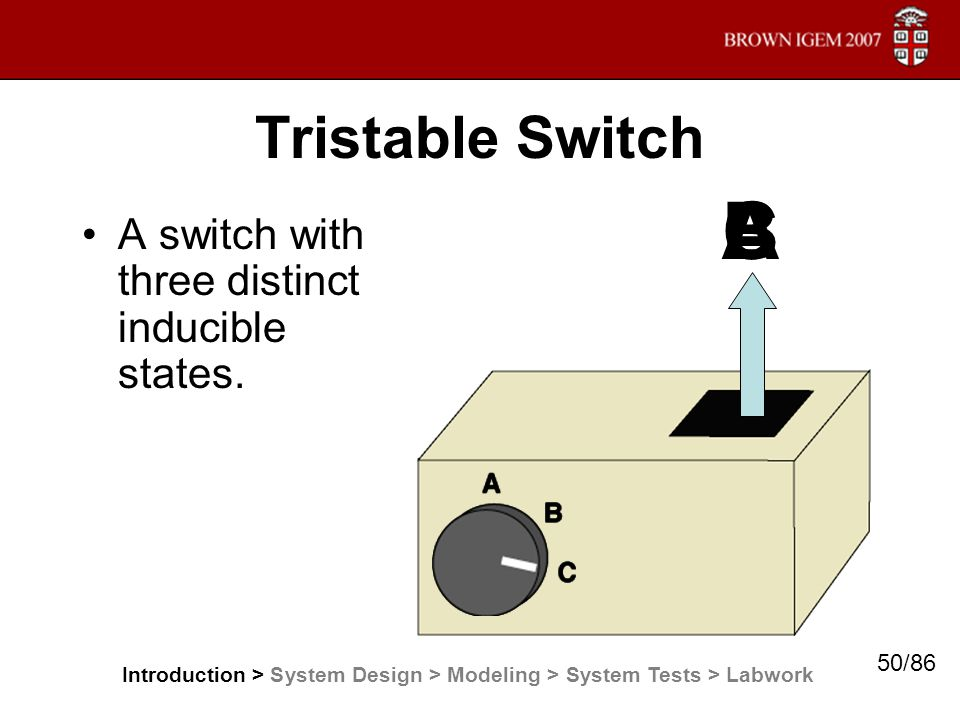 Tristable Switch A switch with three distinct inducible states. ABC Introduction > System Design > Modeling > System Tests > Labwork 50/86