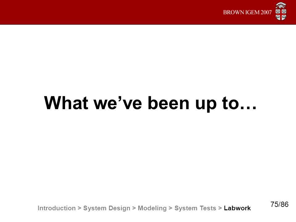 What we've been up to… Introduction > System Design > Modeling > System Tests > Labwork 75/86