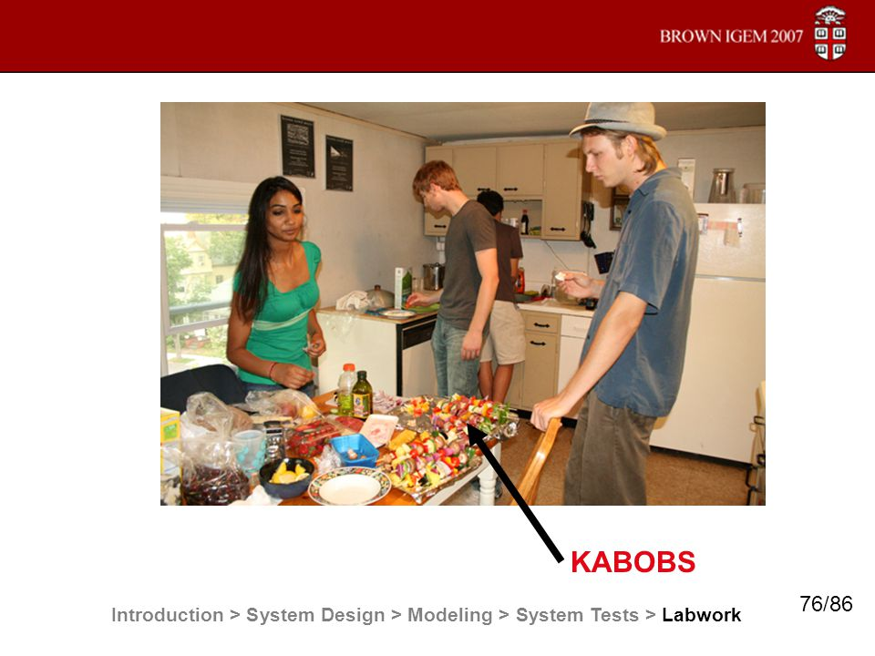 KABOBS Introduction > System Design > Modeling > System Tests > Labwork 76/86