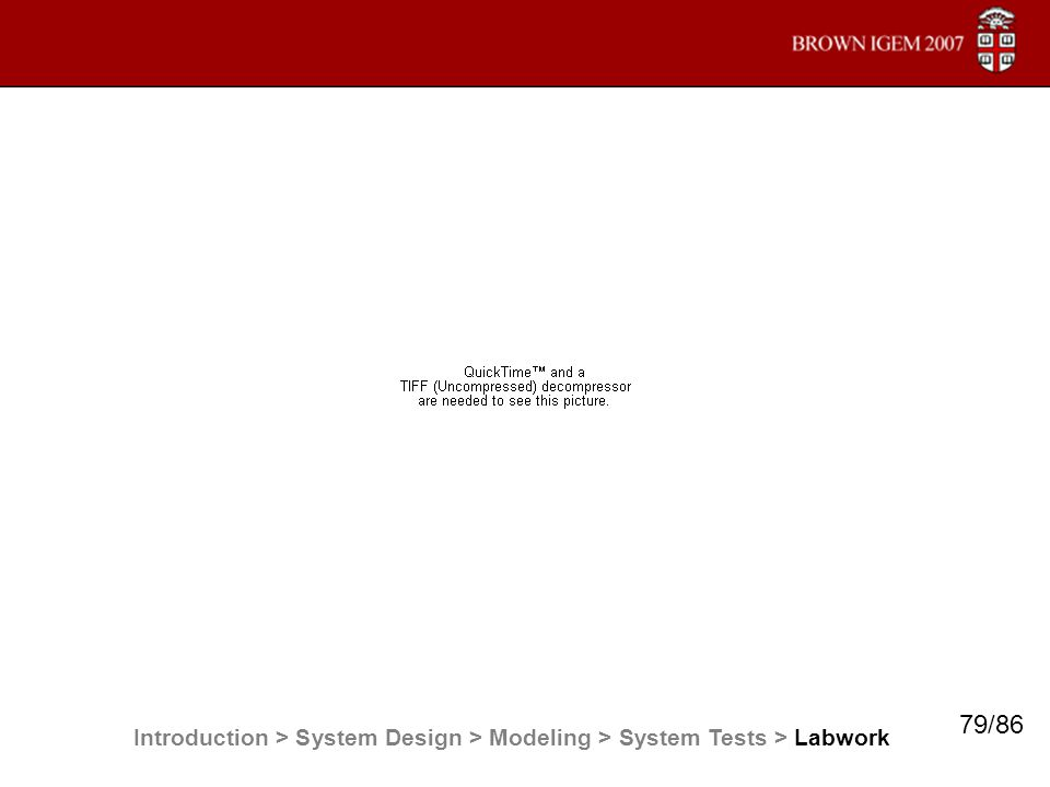 Introduction > System Design > Modeling > System Tests > Labwork 79/86