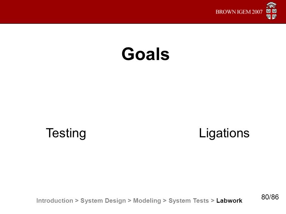 Goals Testing Ligations Introduction > System Design > Modeling > System Tests > Labwork 80/86
