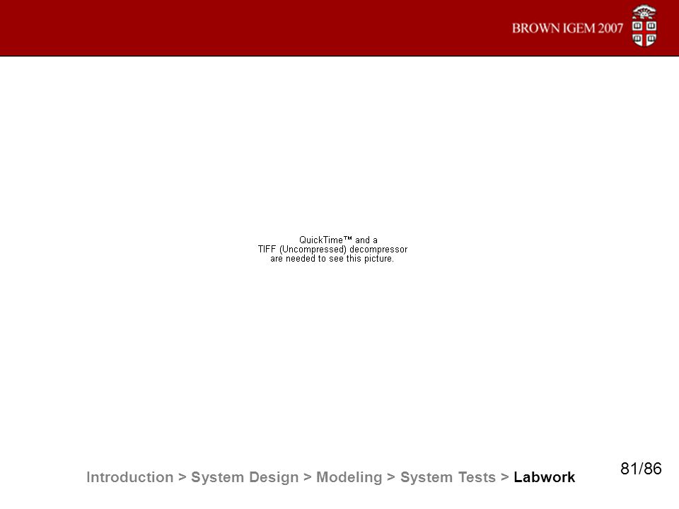 Introduction > System Design > Modeling > System Tests > Labwork 81/86