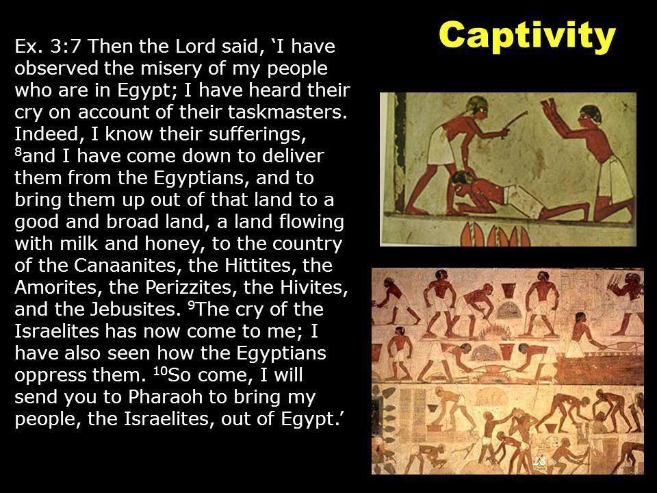 28 Captivity Ex. 3:7 Then the Lord said, 'I have observed the misery of my people who are in Egypt; I have heard their cry on account of their taskmas