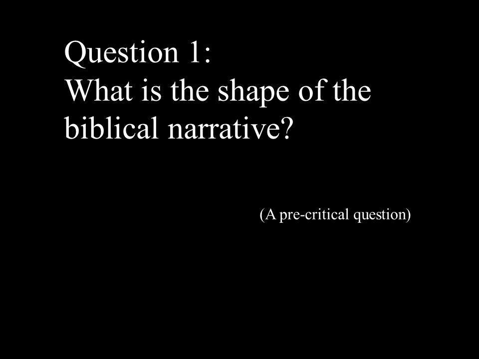 Question 1: What is the shape of the biblical narrative (A pre-critical question)