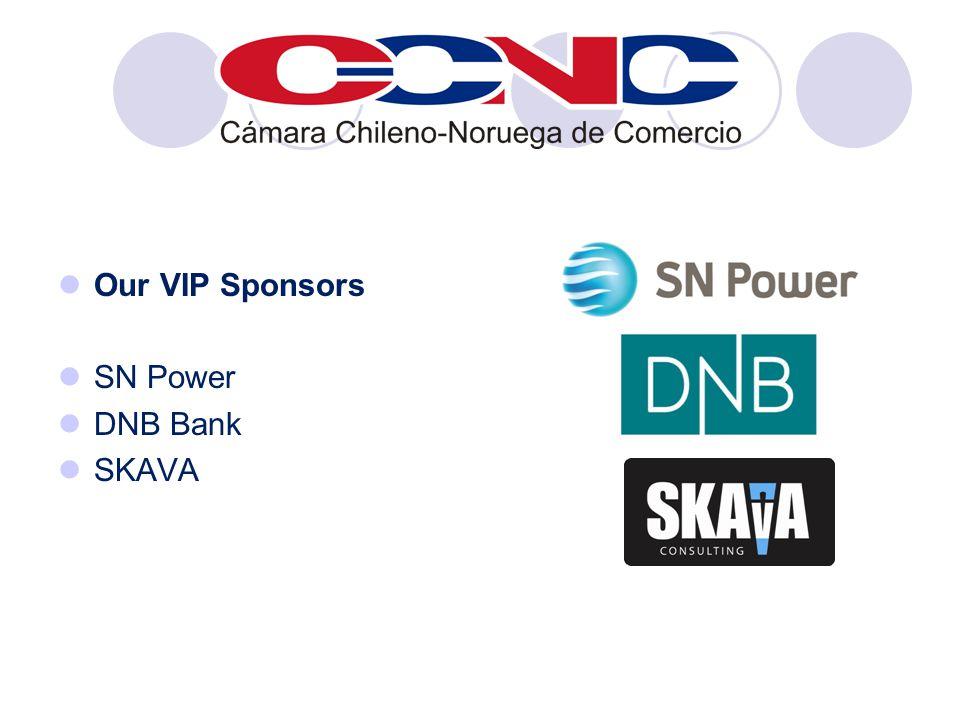 Our VIP Sponsors SN Power DNB Bank SKAVA