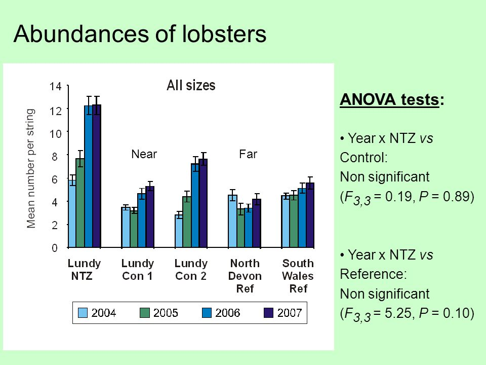 Abundances of lobsters ANOVA tests: Year x NTZ vs Control: Non significant (F 3,3 = 0.19, P = 0.89) Year x NTZ vs Reference: Non significant (F 3,3 = 5.25, P = 0.10) NearFar