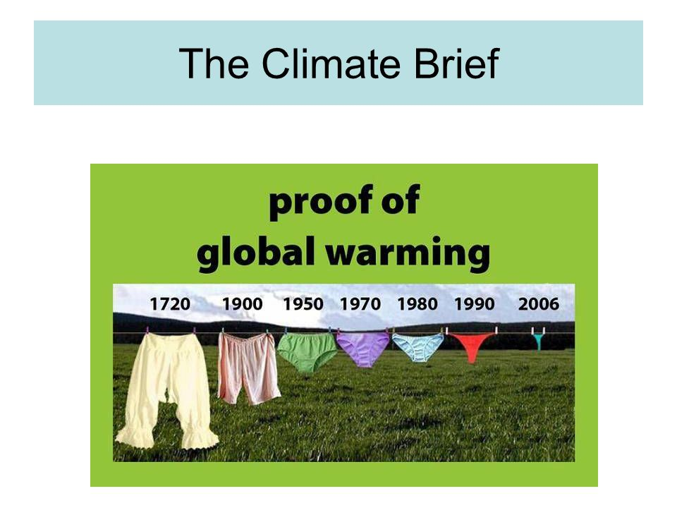 The Climate Brief
