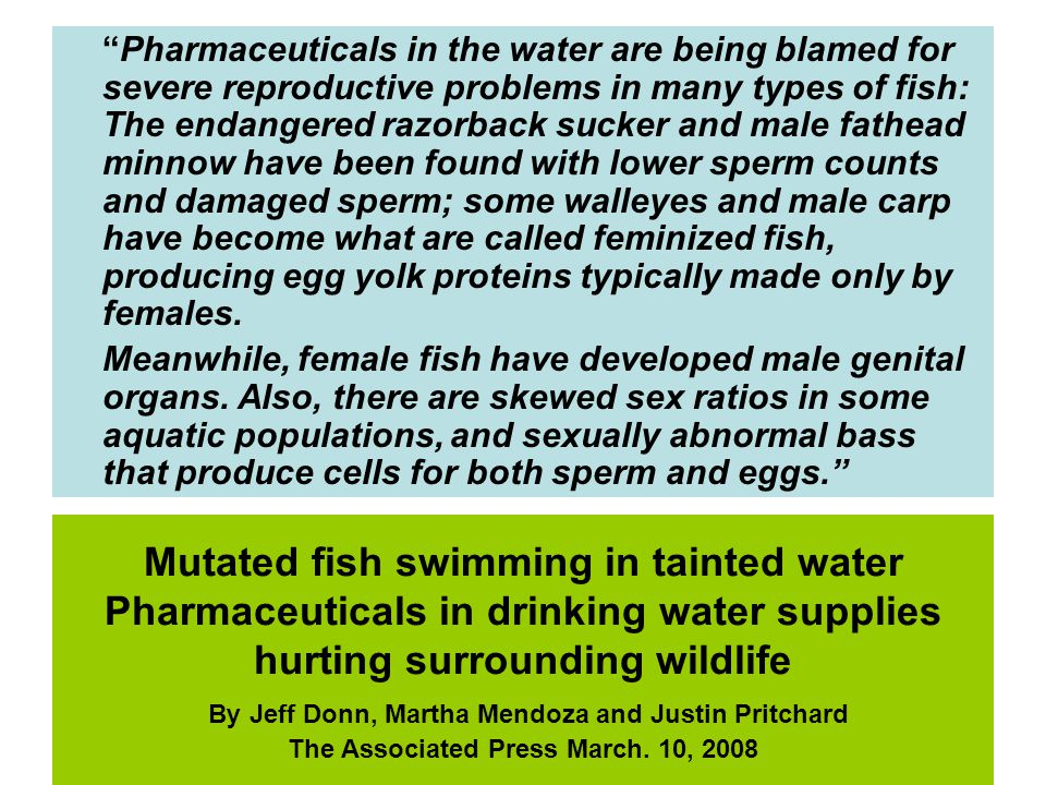 Mutated fish swimming in tainted water Pharmaceuticals in drinking water supplies hurting surrounding wildlife By Jeff Donn, Martha Mendoza and Justin