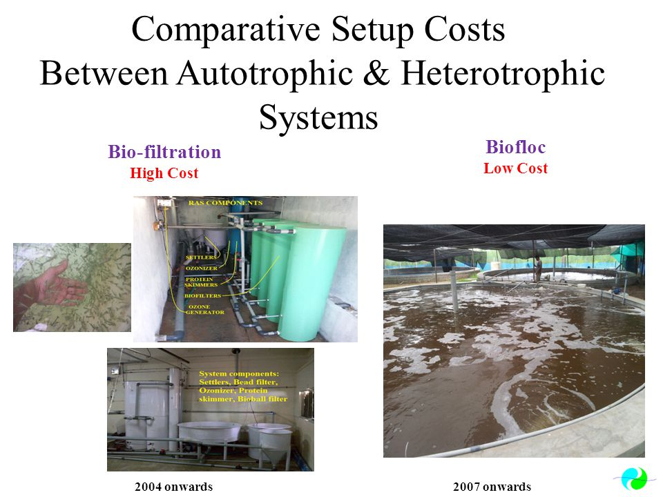 Comparative Setup Costs Between Autotrophic & Heterotrophic Systems Bio-filtration High Cost Biofloc Low Cost 2004 onwards2007 onwards