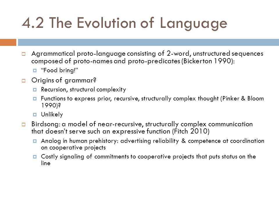 4.2 The Evolution of Language  Agrammatical proto-language consisting of 2-word, unstructured sequences composed of proto-names and proto-predicates (Bickerton 1990):  Food bring!  Origins of grammar.