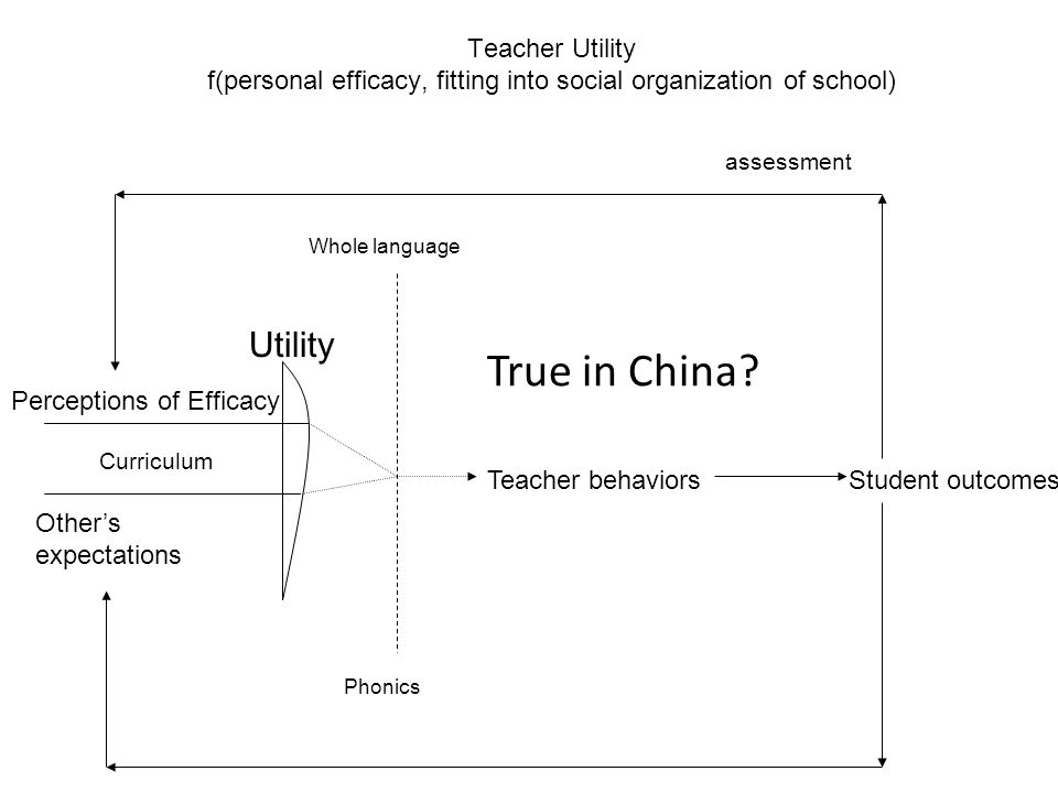 Perceptions of Efficacy Utility Teacher behaviorsStudent outcomes Other's expectations Phonics Whole language Curriculum assessment Teacher Utility f(personal efficacy, fitting into social organization of school) True in China?