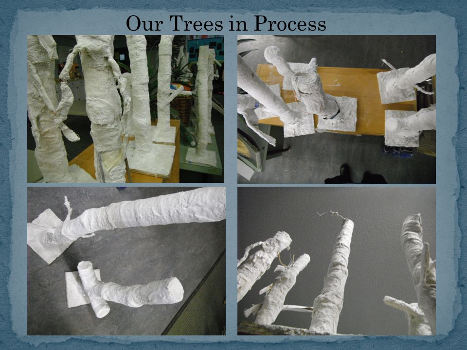 Our Trees in Process