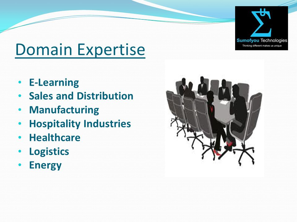 Domain Expertise E-Learning Sales and Distribution Manufacturing Hospitality Industries Healthcare Logistics Energy