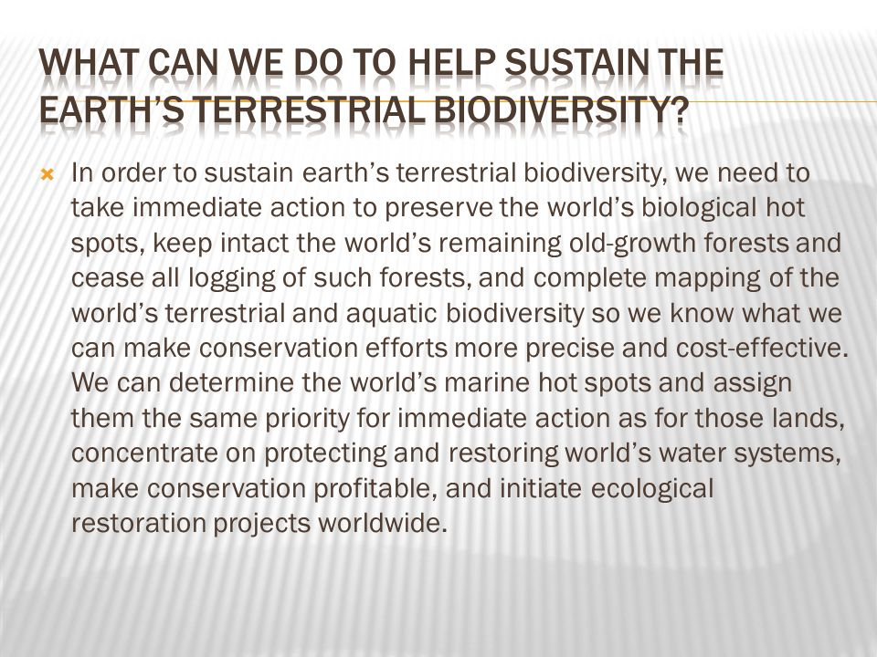  In order to sustain earth's terrestrial biodiversity, we need to take immediate action to preserve the world's biological hot spots, keep intact the world's remaining old-growth forests and cease all logging of such forests, and complete mapping of the world's terrestrial and aquatic biodiversity so we know what we can make conservation efforts more precise and cost-effective.