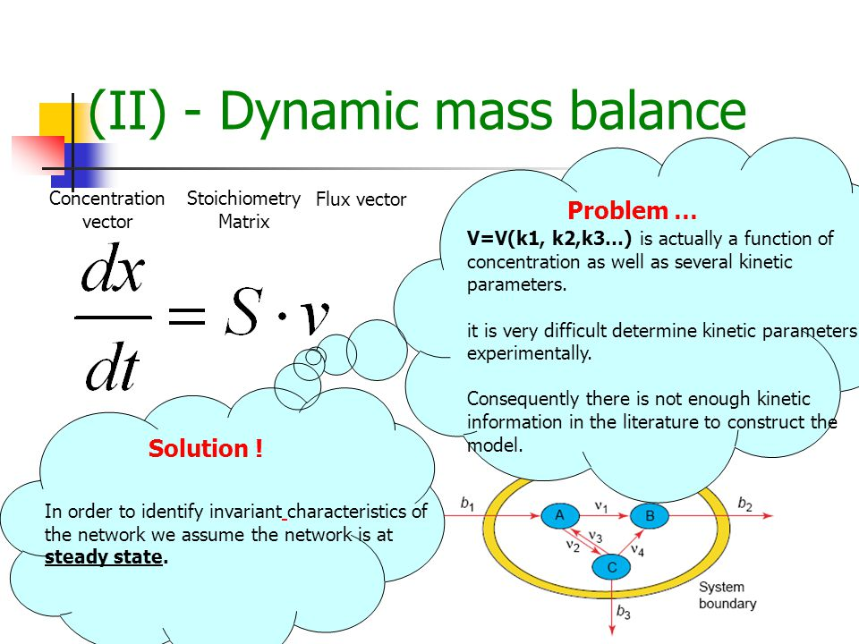 (II) - Dynamic mass balance Stoichiometry Matrix Flux vector Concentration vector