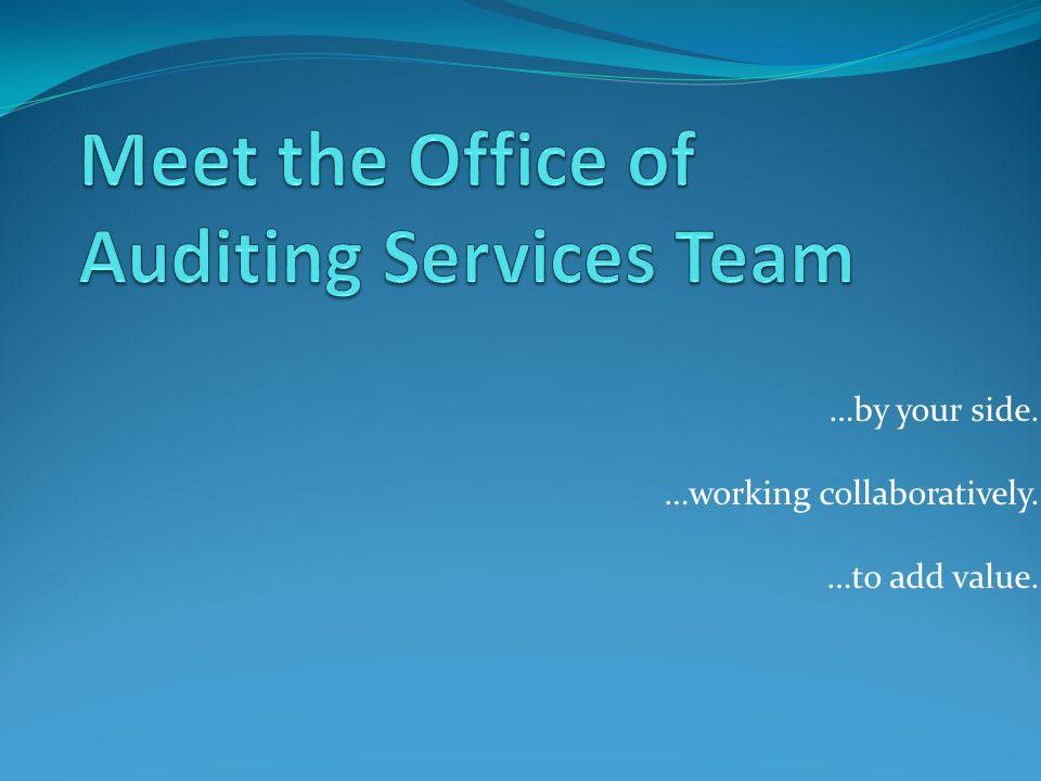 Who we are… Single AuditInternal Audit Transportation Audit