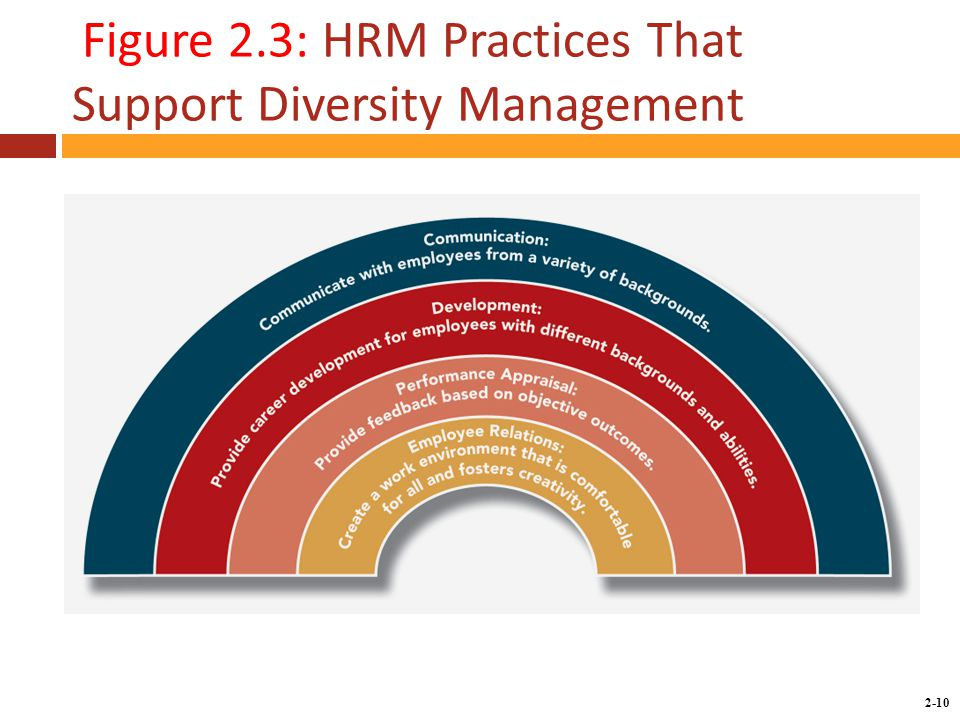 Copyright © 2014 by the McGraw-Hill Companies, Inc. All rights reserved. McGraw-Hill/Irwin 2-10 Figure 2.3: HRM Practices That Support Diversity Manag