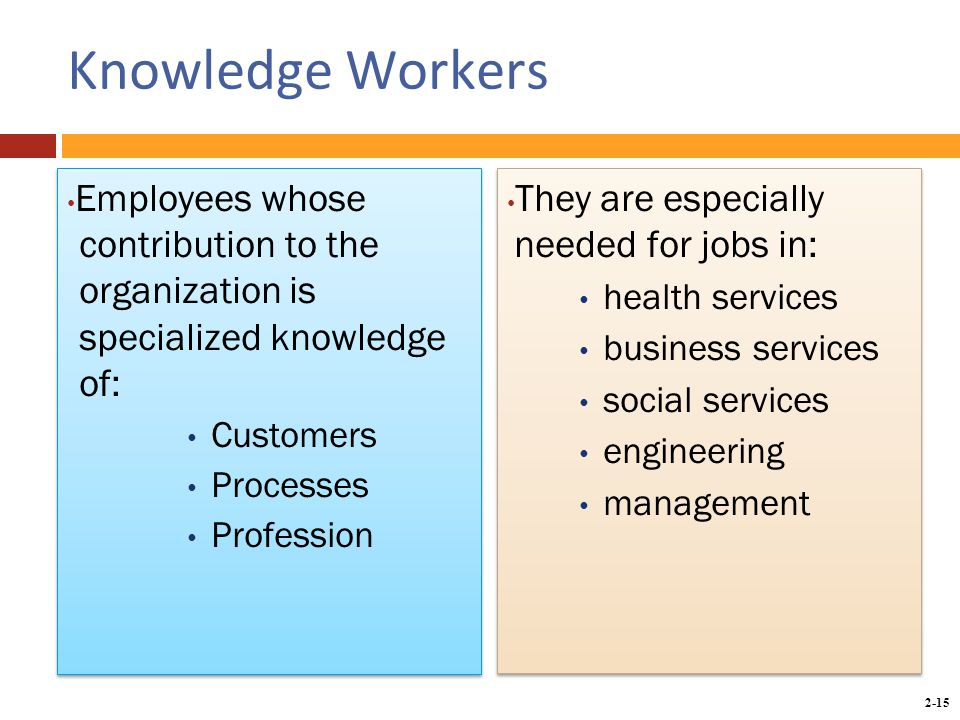 2-15 Knowledge Workers Employees whose contribution to the organization is specialized knowledge of: Customers Processes Profession Employees whose contribution to the organization is specialized knowledge of: Customers Processes Profession They are especially needed for jobs in: health services business services social services engineering management They are especially needed for jobs in: health services business services social services engineering management