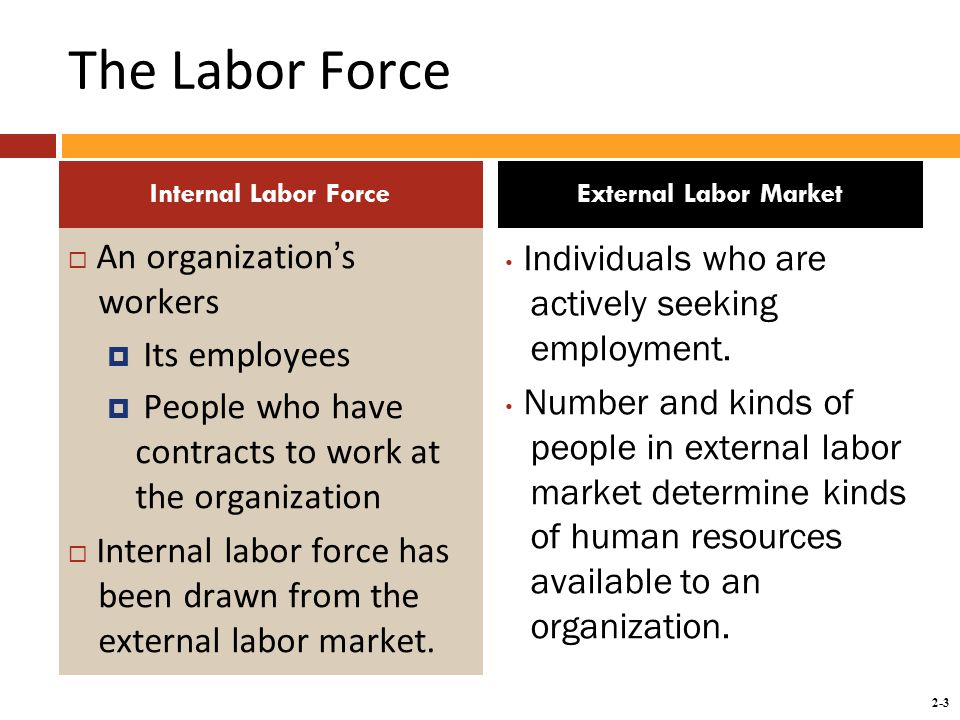 2-3 The Labor Force  An organization's workers  Its employees  People who have contracts to work at the organization  Internal labor force has been drawn from the external labor market.